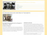 elvegard.info Webseite Vorschau
