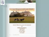 eurohengststation-smidt.de
