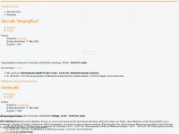 achimfessler.de