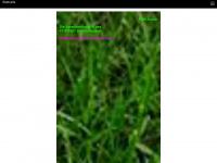fcw-kurier.de