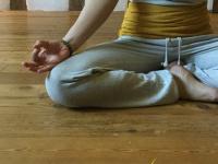 yogalehrer-ausbildung-koeln.de