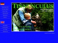 tinnunculus-heidelberg.de