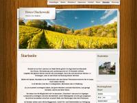 fewo-olschewski.de