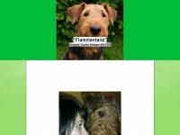 flammentanz-airedale-terrier.de