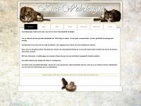 kira-webdesign.ch Webseite Vorschau