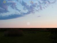 foxberghof.de