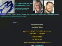 ftsgmbh.de Webseite Vorschau