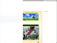 oldtimer-for-hochzeit.homepage.eu