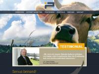 plasmatica-webdesign.de