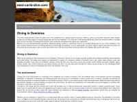 east-carib-dive.com