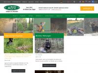 jageninungarn.hu Webseite Vorschau