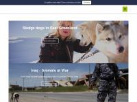 robinhood-tierschutz.at