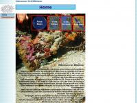 unterwasser-welt-mittelmeer.de Thumbnail