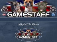 gamestaff.de