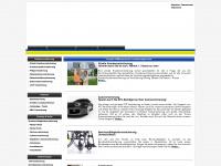 versicherung-in.com