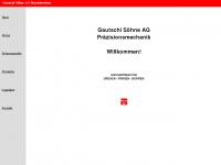 Gautschi-soehne.ch