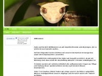 geckos-united.de