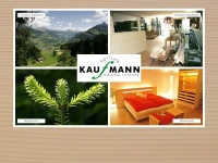 Kaufmann-massivholz.at