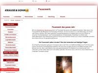 feuerwerk.info