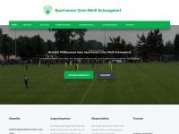 gw-schwagstorf.de