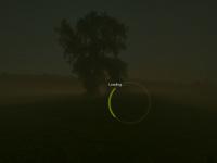 havaneserzucht.ch Webseite Vorschau