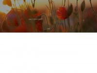 home-for-dogs.de