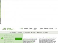 zukunft-stadtbahn.de Thumbnail