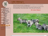 lille-vikings.ch