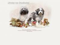 loewchen-grundbachtal.de Webseite Vorschau