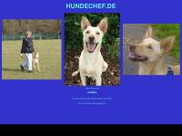 hundechef.de Thumbnail