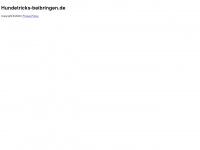 hundetricks-beibringen.de Thumbnail