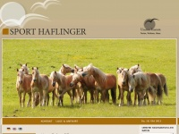 sporthaflinger.com
