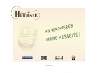 Hurvinek-jena.de