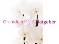 orchideen-ratgeber.de