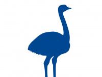 bluenandu.de