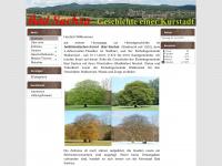 bad-sachsa-geschichte.de
