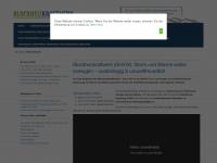 blockheizkraftwerk-bhkw.net
