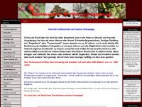 insektenwelt-wechterswinkel.de