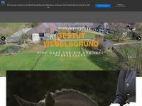 webelsgrund.de