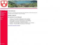 iten-stiftung.ch