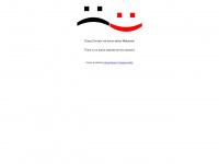 kachelofenexperte.de Webseite Vorschau