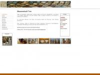 keramik-massenhaft-ton.de