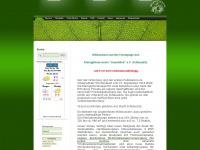 kgv-auenblick.info