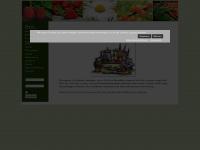 kgv-wallau.de