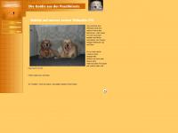 kieselchen.de Webseite Vorschau
