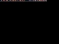 killermichel.de Webseite Vorschau