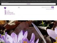 kirche-weyhausen.de Webseite Vorschau