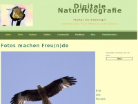 kirchenber.de Webseite Vorschau