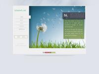 schadwill.net
