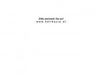 kvm-usv.at Webseite Vorschau